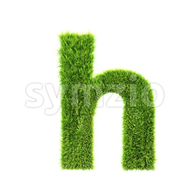 herb font H - Lower-case 3d letter Stock Photo