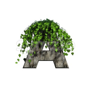 concrete letter A with ivy - Capital 3d character Stock Photo