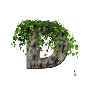 concrete font D covered with ivy - Capital 3d character Stock Photo