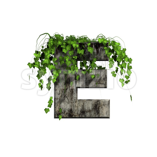 Ivy letter E - Capital 3d character Stock Photo