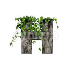 Ivy letter H - Upper-case 3d character Stock Photo