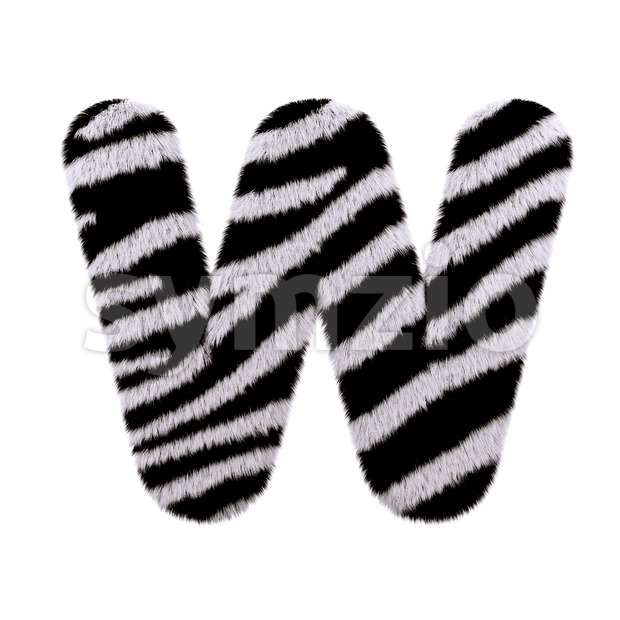 zebra coat font W - Capital 3d letter Stock Photo