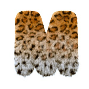 3d Capital character M covered in leopard texture Stock Photo
