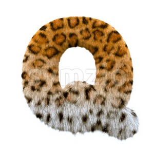 3d Upper-case font Q covered in leopard texture Stock Photo